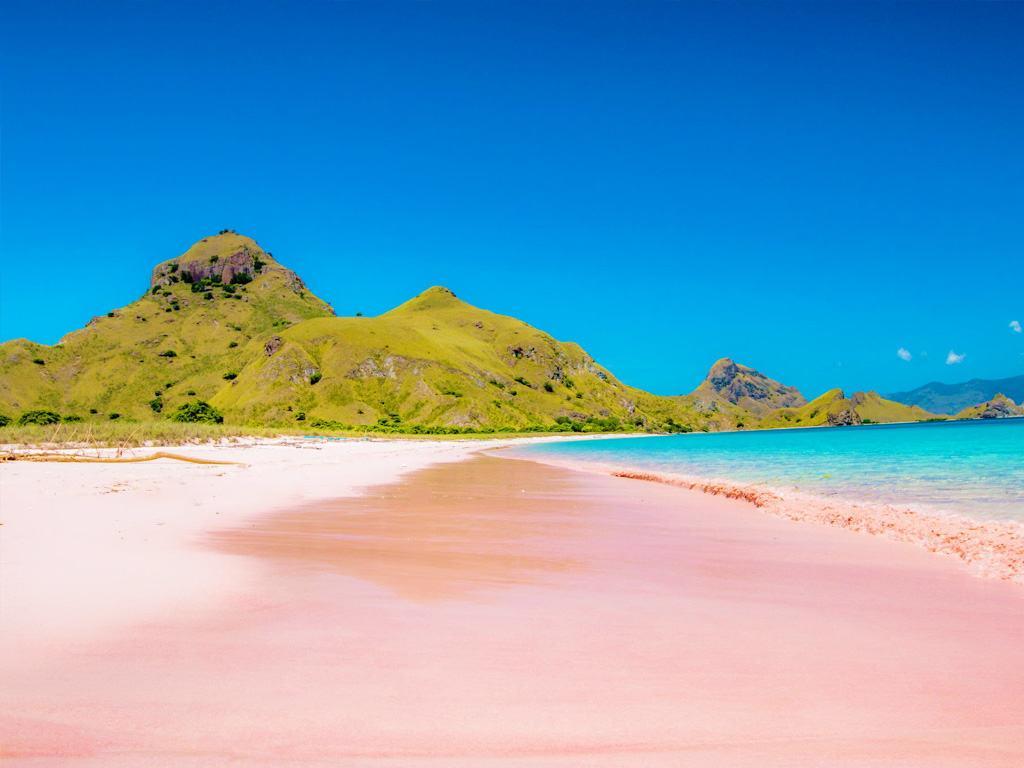 la playa rosa Komodo