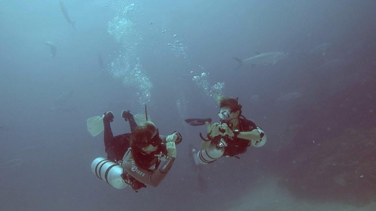 dive industry marketing