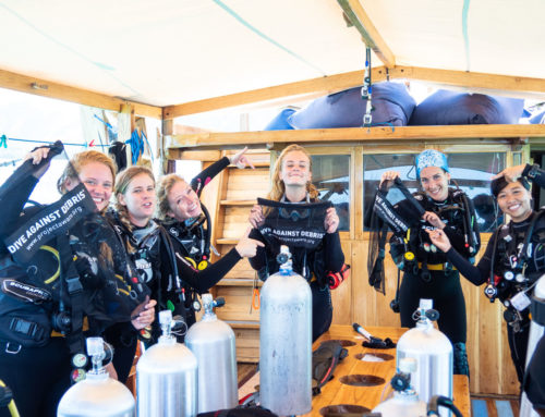 PADI Women's Dive Day 2019
