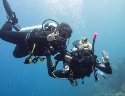Protect the Oceans: Teach Scuba Diving