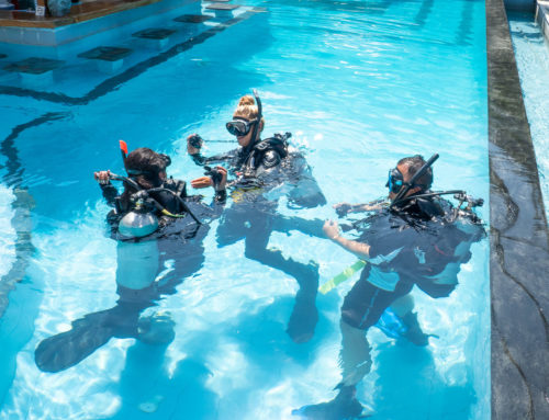 6 Reasons Why You Should Learn to Scuba Dive