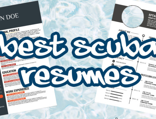 The Perfect Scuba Diving Resume Format